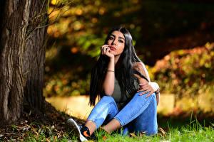 Fotos Brünette Sitzt Jeans Unterhemd Blick Bokeh Anita junge Frauen