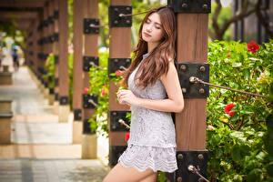Tapety na pulpit Azjaci Rozmazane tło Dziewczyna z brązowymi włosami Sukienka Ręce młoda kobieta
