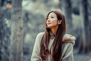 Pictures Asian Bokeh Brown haired Staring Girls