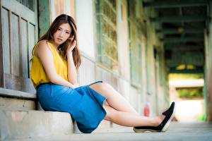 Picture Asian Blurred background Brown haired Skirt Sit