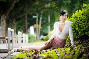 Hintergrundbilder Asiaten Bokeh Brünette Strauch Sitzen Mädchens