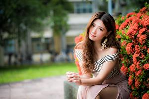 Wallpapers Asian Blurred background Frock Sitting Brown haired Glance Hands Beautiful young woman
