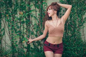 Images Asiatic Brown haired Hands Posing Shorts Belly young woman