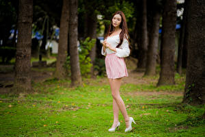 Pictures Asiatic Brown haired Legs Skirt Blouse Staring young woman