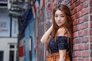 Pictures Asiatic Brown haired Walls Made of bricks Glance Blurred background