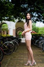 Fotos Asiaten Brünette Posiert Bein Kleid Bokeh junge Frauen