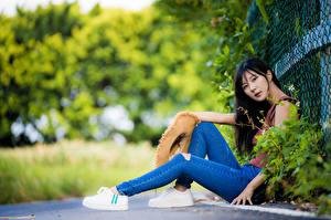 Fotos Asiaten Brünette Sitzen Starren Jeans Unscharfer Hintergrund junge frau