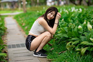 Images Asiatic Brunette girl Sit Shorts Sleeveless shirt Smile Staring Blurred background young woman