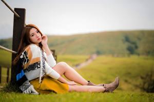 Fotos Asiaten Gras Bokeh Braune Haare Sitzen Bein Mädchens