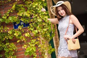 Bakgrunnsbilder Asiatisk Veske Bokeh Hatt Smil Kjole Hender Brunt hår kvinne Unge_kvinner