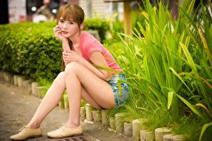 Desktop hintergrundbilder Asiatische Strauch Braunhaarige Sitzend Bein Mädchens