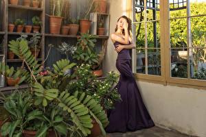 Hintergrundbilder Asiaten Fenster Zimmer Pose Kleid Hand Mädchens