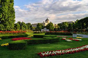 Hintergrundbilder Österreich Wien Parks Rasen Strauch Design BlumenPark