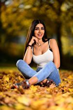 Fotos Herbst Brünette Blattwerk Sitzend Unterhemd Jeans Lächeln Starren Unscharfer Hintergrund Anita junge Frauen Natur