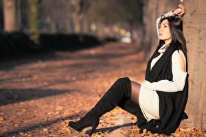 Bilder Herbst Blattwerk Brünette Sitzend Bein Stiefel Bokeh Mädchens