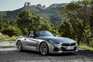Images BMW Silver color Roadster Z4 M40i Z4 2019 G29