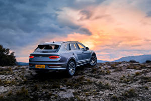 Images Bentley Stones CUV Metallic Back view Bentayga V8, Worldwide, 2020 Cars