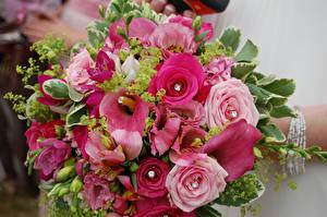 Bilder Blumensträuße Rose Drachenwurz Eustoma Blumen