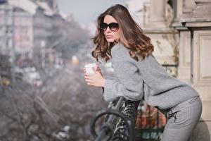 Bilder Braune Haare Posiert Brille Sweatshirt junge Frauen