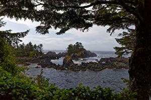 Hintergrundbilder Kanada Küste Ozean Felsen Bäume Ucluelet, British Columbia