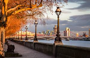 Wallpapers England Autumn River Bridges London Waterfront Street lights Trees River Thames, Chelsea Bridge Cities