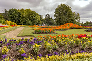 Desktop hintergrundbilder England Parks Studentenblume Georginen Design Rasen Waddesdon Manor gardens Natur