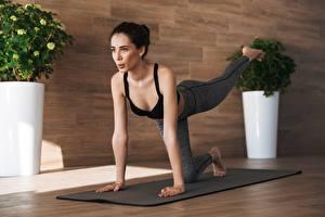 Fotos Fitness Brünette Körperliche Aktivität Hand Bein junge Frauen