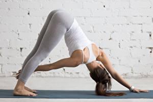 Bilder Fitness Joga Körperliche Aktivität Pose Hand Bein junge Frauen