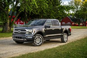 Fotos Ford Pick-up Schwarz Metallisch F-150, 2020 Autos
