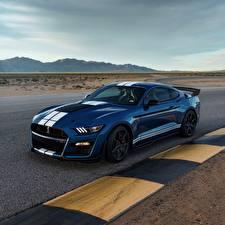桌面壁纸,,福特汽车,蓝色,Mustang Shelby GT500 2019,汽车