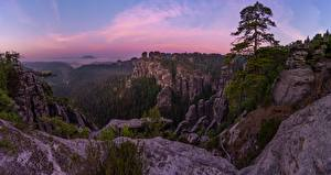 Wallpaper Forests Parks Germany Evening Crag Bastei Cliffs Nature