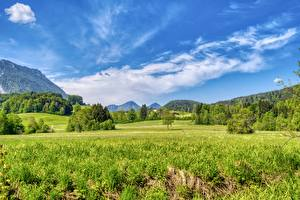 Bureaubladachtergronden Duitsland Grasland Bos Hemelgewelf Beieren Gras Aschau im Chiemgau, Rosenheim