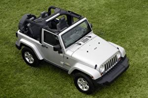 Fondos de escritorio Jeep VUD Desde arriba Plata color Hierba  autos