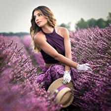 Fotos Lavendel Felder Handschuh Der Hut Hand Unscharfer Hintergrund Mädchens