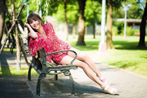 Bilder Parks Asiaten Bokeh Braunhaarige Lächeln Bank (Möbel) Sitzen Bein Mädchens