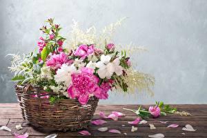 Hintergrundbilder Pfingstrosen Weidenkorb Kronblätter Tisch Blüte