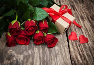 Hintergrundbilder Rose Rot Geschenke Blüte