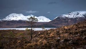 Pictures Scotland Mountains Stones Trees Rock Torridon hills Nature