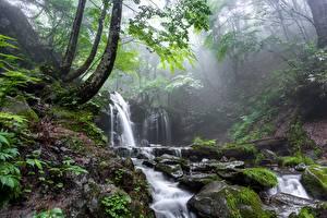 デスクトップの壁紙、、石、滝、霧、コケ、渓流、自然