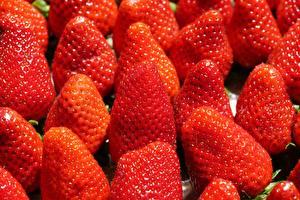 Fondos de escritorio Fresas Muchas De cerca Rojo