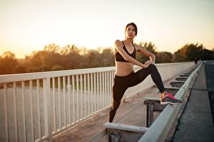 Desktop wallpapers Sunrises and sunsets Fitness Fence Hands Legs Stretch exercise Posing Girls