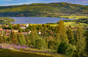 Pictures Sweden Lake Houses Hill Village Trees Hallen, Dalarna Nature