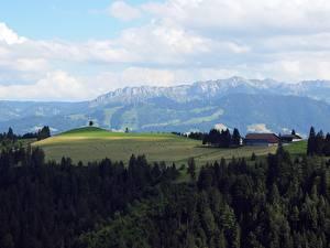 Fotos & Bilder Schweiz Wälder Felder Gebirge Horizont Napf Bereich, Kanton Bern Natur