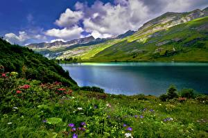 Pictures Switzerland Mountains Lake Grass Clouds Alps Engstlensee