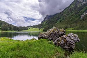 Bilder Schweiz Steine See Berg Wald Gras Voralpsee, St. Gallen Natur