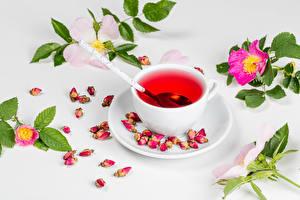 Wallpapers Tea Rose Cup Branches Petals Food