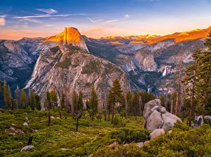 Bilder Vereinigte Staaten Park Berg Steine Landschaftsfotografie Yosemite Fichten