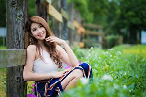 Bilder Asiaten Bokeh Braune Haare Blick Lächeln Sitzt Hand Mädchens