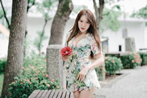 Fotos Asiatisches Bokeh Kleid Braune Haare Hand Starren Mädchens