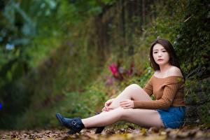 Fotos Asiatische Braune Haare Bokeh Sitzen Hand Bein junge Frauen